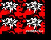 bregstrom-katalog_2017